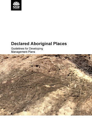 Cover image for Declared Aboriginal Places: Guidelines for Developing Management Plans