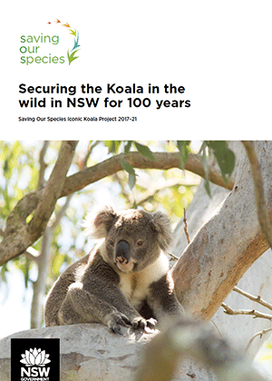 Saving Our Species Iconic Koala Project 2017–21