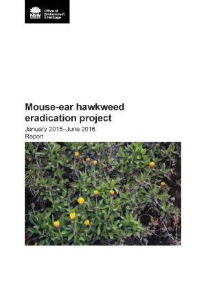 Mouse-ear hawkweed eradication project 2015-16 report cover