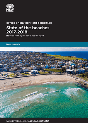 Cover of State of the beaches 2017-18 statewide summary
