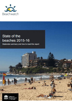 State of the Beaches Annual Report 2015-2016 cover