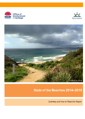 Cover image for State of the Beaches 2014 2015