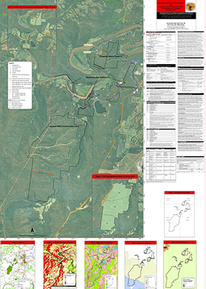 Bamarang and Wogamia Nature Reserves and Colymea State Conservation Area Fire Management Strategy