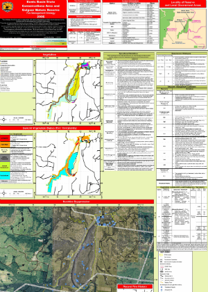Bents Basin State Conservation Area and Gulguer Nature Reserve Fire Management Strategy