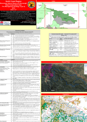 Boonanghi Nature Reserve and State Conservation Area Fire Management Strategy