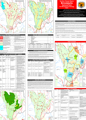 Brindabella National Park Fire Management Strategy