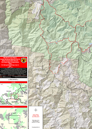 Cottan-Bimbang National Park and State Conservation Area and The Cells State Conservation Area Fire Management Strategy