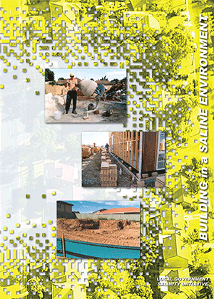 Cover image for Building in a Saline Environment