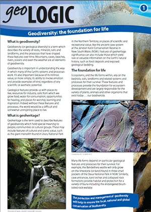 Cover for Geologic 1. Geodiversity: the foundation for life