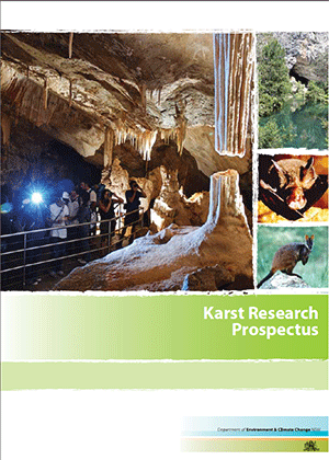 Cover for Karst Research Prospectus