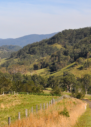 Managing NSW's diverse landscapes productively yet sustainably requires access to accurate, high-quality soil and   land information.