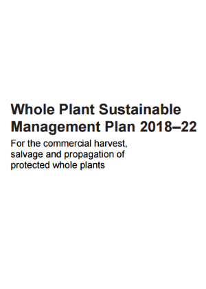 Whole Plant Sustainable Management Plan 2018–22: commercial harvest, salvage and propagation of protected whole plants publication cover