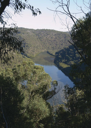 Berowra Valley National Park and Berowra Valley Regional Park Draft Plan of Management