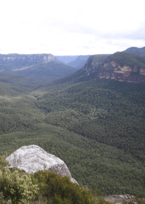 Blue Mountains National Park Plan of Management