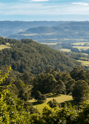 Kangaroo Valley Group Nature Reserves Plan of Management cover