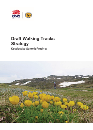 Kosciuszko Summit Precinct Draft Walking Tracks Strategy