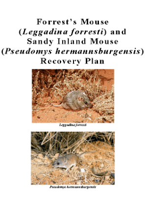 Forrest's Mouse (Leggadina forresti) and Sandy Inland Mouse (Pseudomys hermannsburgensis) Recovery Plan cover.