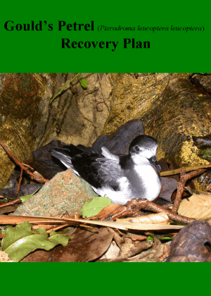 Goulds Petrel (Pterodroma leucoptera leucoptera) Recovery Plan cover.