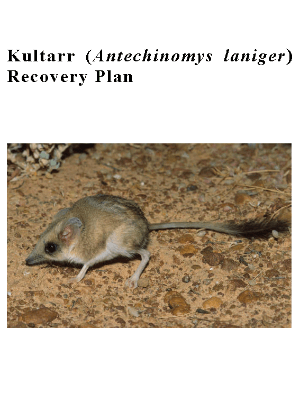 Kultarr (Antechinomys laniger) Recovery Plan cover.