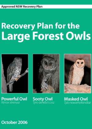 Recovery Plan for the Large Forest Owls cover.
