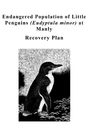 Endangered Population of Little Penguins (Eudyptula minor) at Manly Recovery Plan cover.