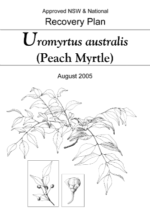 Approved NSW & National Recovery Plan Uromyrtus australis (Peach Myrtle) cover.
