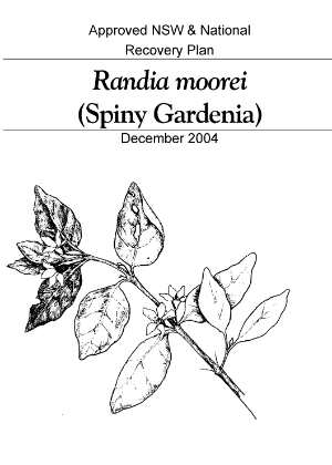 Approved NSW & National Recovery Plan Randia moorei (Spiny Gardenia) cover.