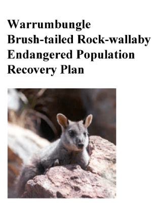 Warrumbungle Brush-tailed Rock-wallaby Endangered Population Recovery Plan cover.