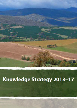 Cover of Knowledge Strategy 2013-17