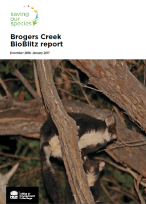 Brogers Creek BioBlitz Report cover