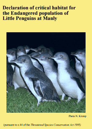 Declaration of critical habitat for the Endangered population of Little Penguins at Manly