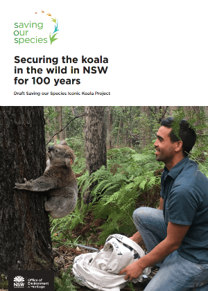 Securing the koala in the wild in NSW for 100 years cover