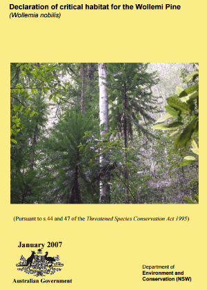 Declaration of critical habitat for the Wollemi Pine (Wollemia nobilis)