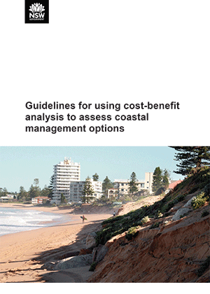 Guidelines for using cost–benefit analysis to assess coastal management options