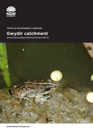 Cover of Gwydir catchment: Annual Environmental Watering Priorities 2018-19