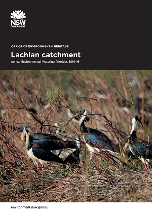 Cover of Lachlan catchment: Annual Environmental Watering Priorities 2018-19