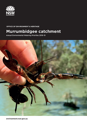 Cover of Murrumbidgee catchment: Annual Environmental Watering Priorities 2018-19