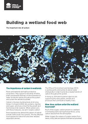 Cover of factsheet: Building a wetland food web