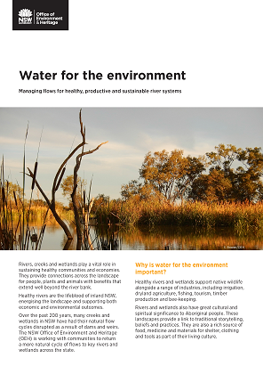 Water for the environment: Managing flows for healthy, productive and sustainable river systems