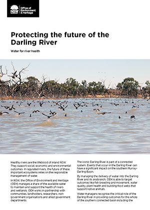 Cover image for Factsheet - Protecting the future of the Darling River