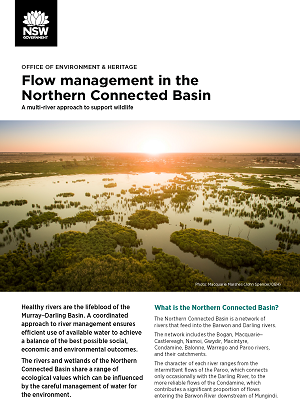 Cover of Flow management in the Northern Connected Basin showing image of the Macquarie Marshes