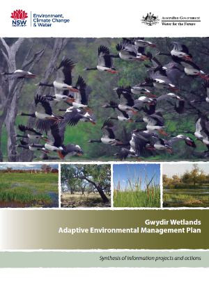 Gwydir Wetlands adaptive environmental management plan cover