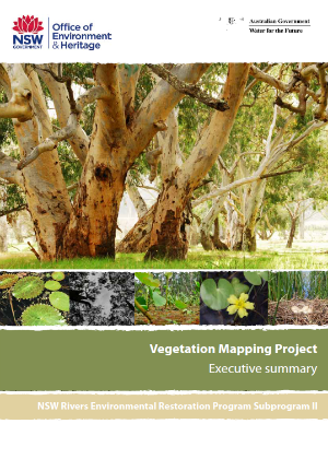 Rivers Environmental Restoration Project Vegetation Map Executive Summary cover