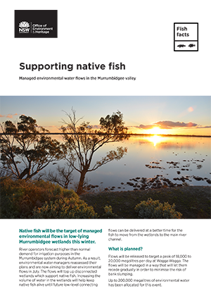 Supporting native fish
