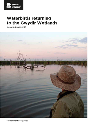 Cover of factsheet: Waterbirds returning to Gwydir wetlands