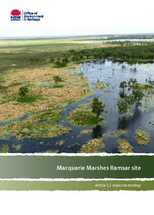 Macquarie Marshes Ramsar site - response strategy cover