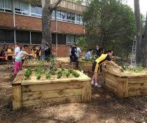 Bonnyrigg Highschool Eco Schools Grants Garden