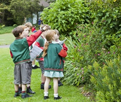 School children learning about plants and flowers
