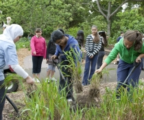 School students at First Farm participate in gardening session