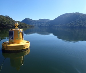 Buoy in the Hawkesbury River
